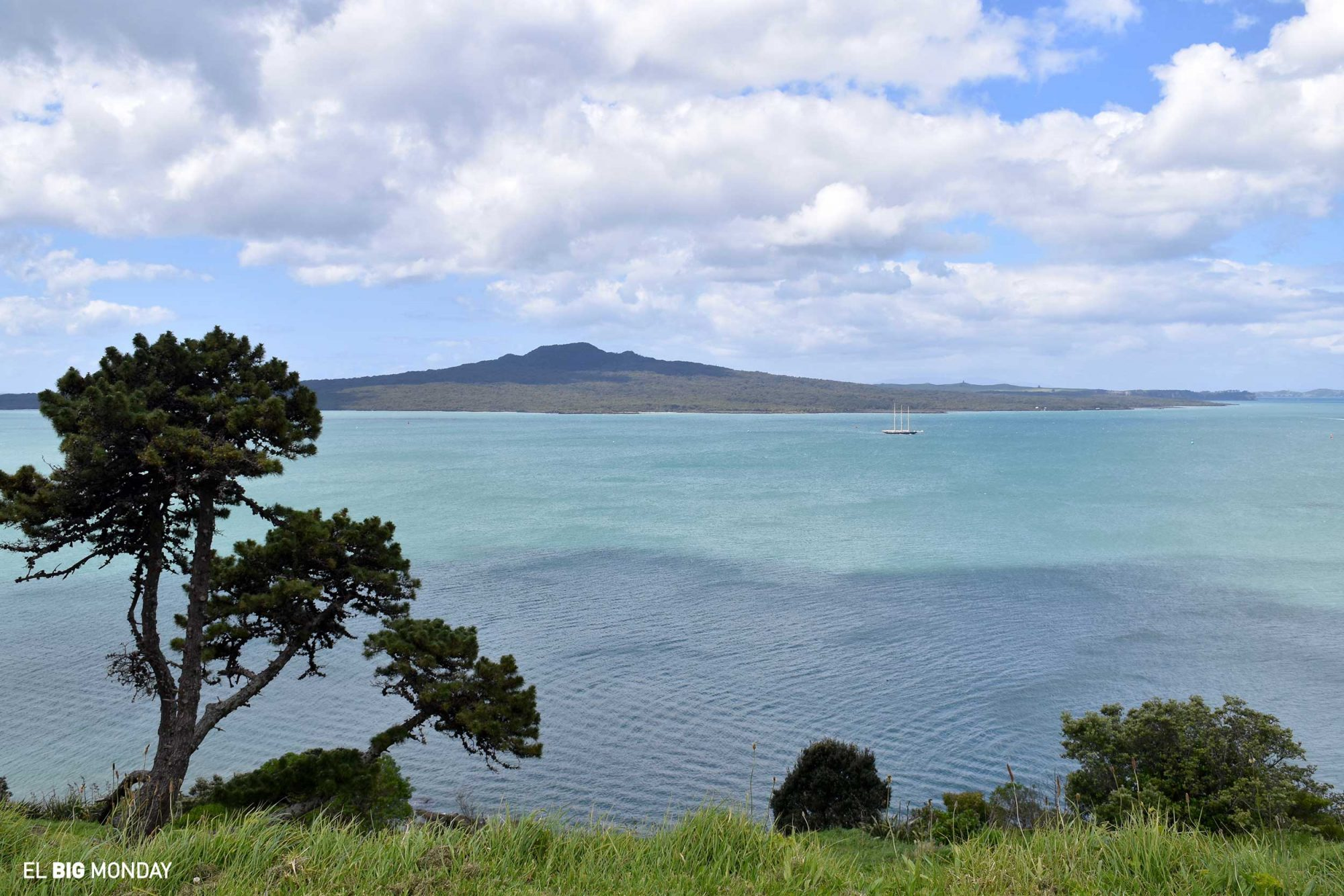 The view from one of Auckland's look out points