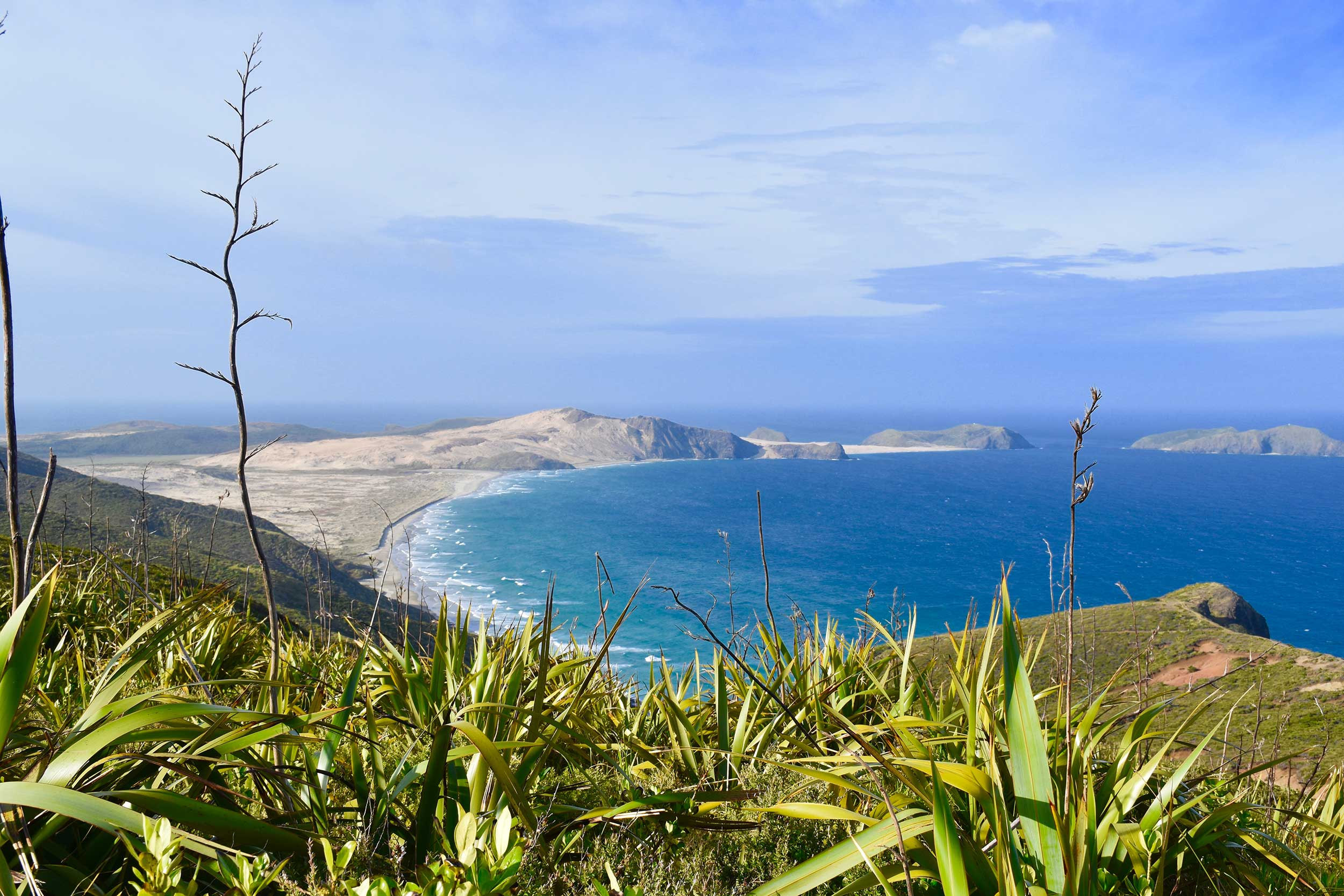 View from Cape Reinga